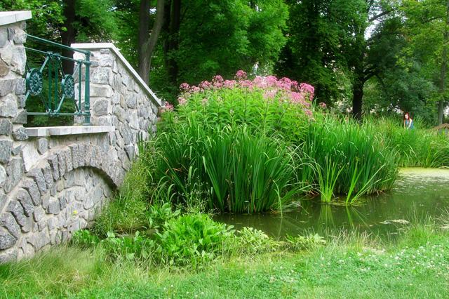 Hortus conclusus il giardino medievale - Giardino in inglese ...