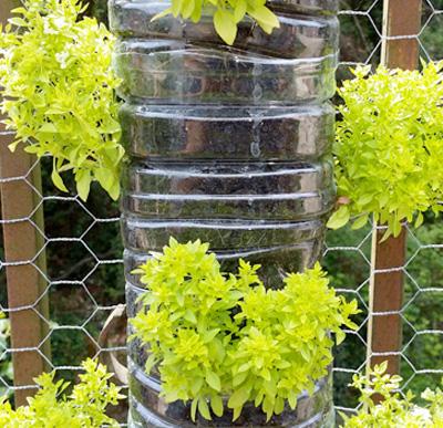 Il giardino verticale funzioni struttura filosofia for Giardino verticale