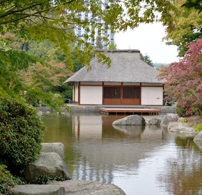 Giardino Zen Utilizzo: Giardino zen con fontana del concetto di arredamento e...