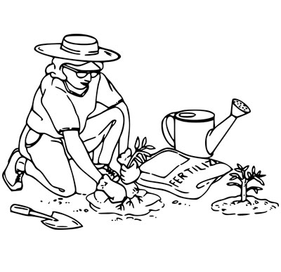 Consigli per progettare un orto in citt e coltivare for Progettare un interno
